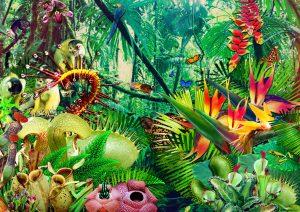 Click to browse Oddscene's Artwork portfolio